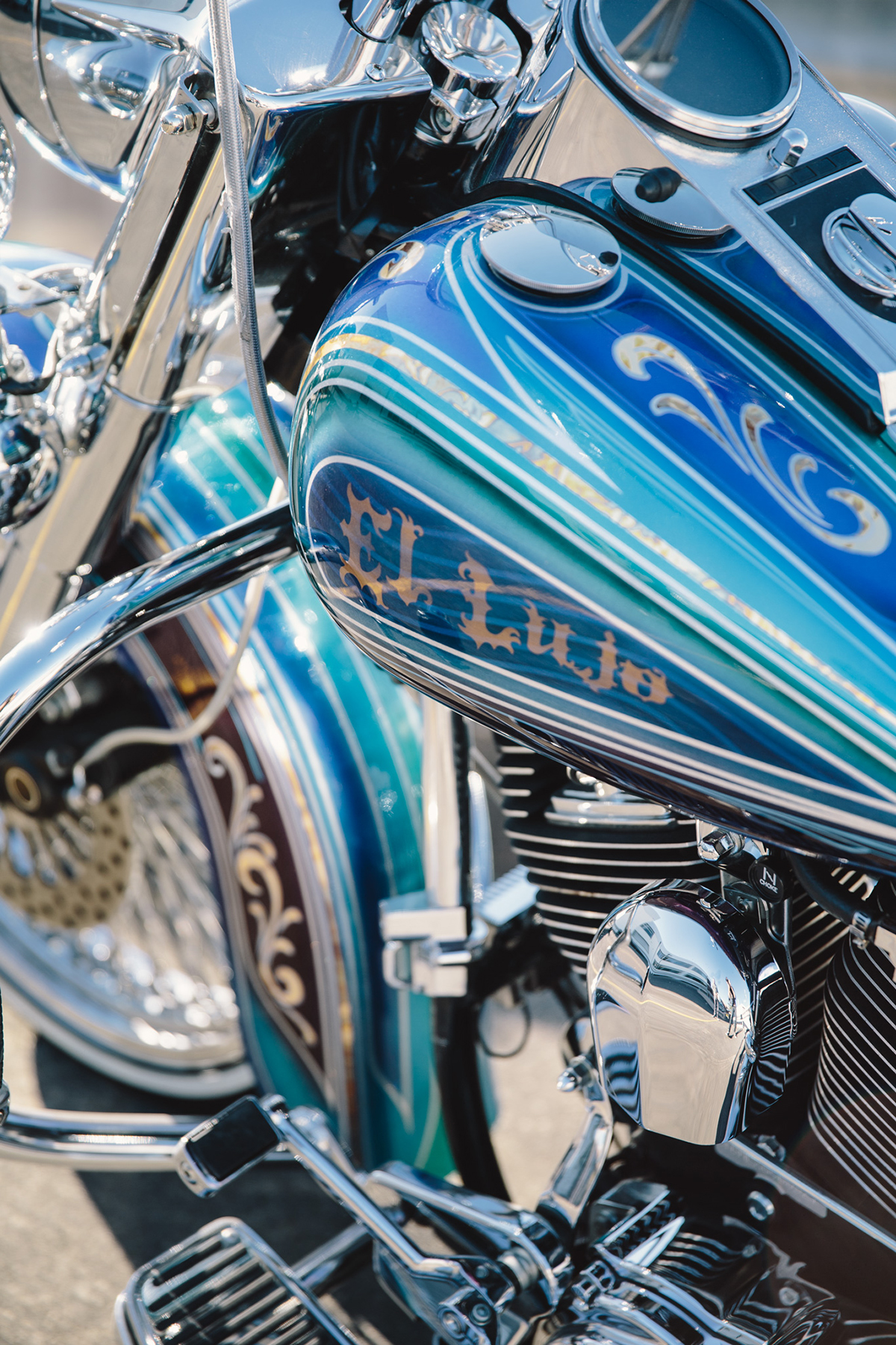 Harley-Davidson_Heritage_Softail_lowrider20160721 (4)