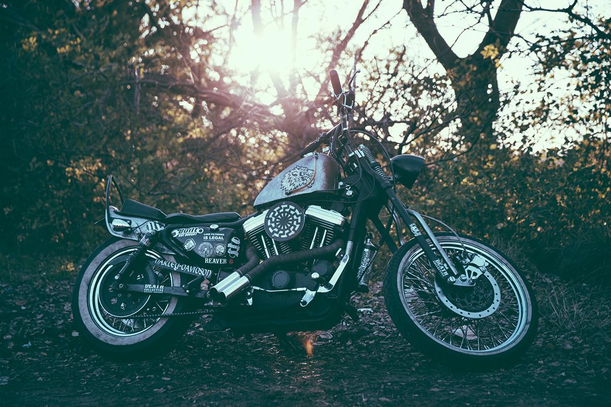 Harley-Davidson_Sportster_Chopper20160728-(207)